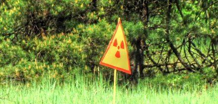Ve městě Ivankov se buduje elektrárna na biopaliva. Budou se pálit černobylské lesy?