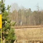 Černobylské lesy mají problém, tlejí příliš pomalu