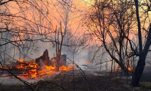 V Černobylské zóně hoří. Policie už má viníka