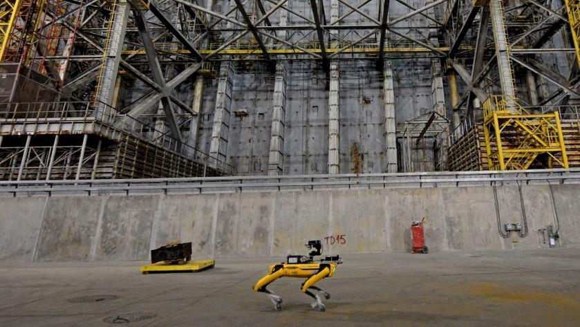 Po Černobylu se procházel robotický pes